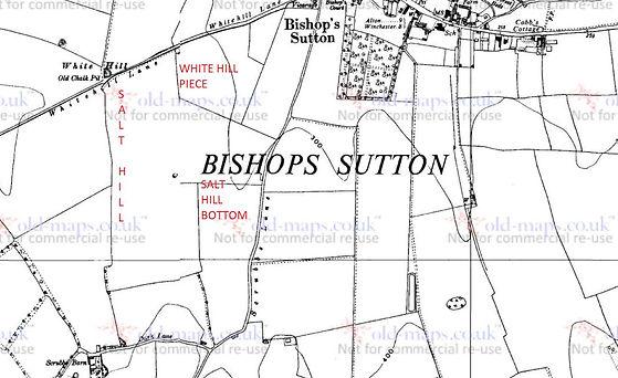 Bishop's Sutton, Salt Hill