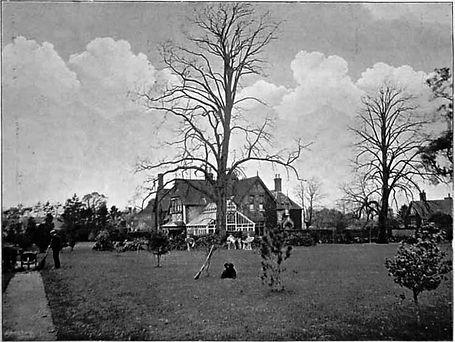 Bishop's Sutton, Lacklands