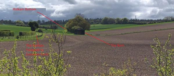 Bishop's Sutton, Holkam Bottom Field