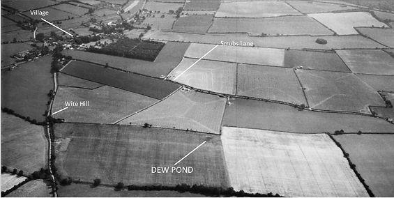 Bishop's Sutton, White Hill Dew Pond 1947