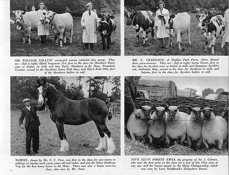Bishop's Sutton,  Alresford Show 1946