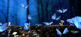 Blue Butterfly Mushroom_.jpg