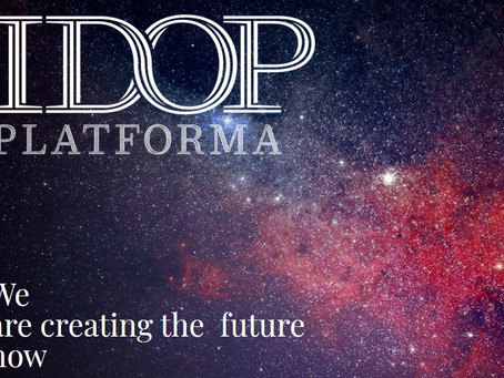 IDOP Platform for Collecting the Non-financial information as an Example of Good Practice