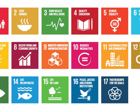 SDGs: An Interesting Upcoming Online Organization