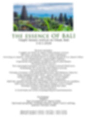 Bali 2020 program english copy.jpg