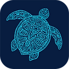 1 x friends of buddina turtle logo in ro