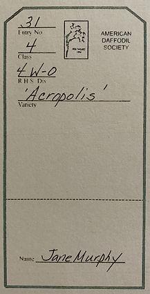 NarcissusAcropolis EntryCard.jpeg
