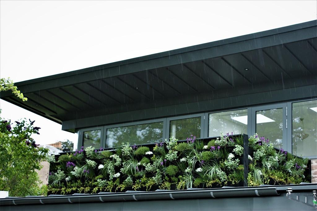 Green living wall balcony.