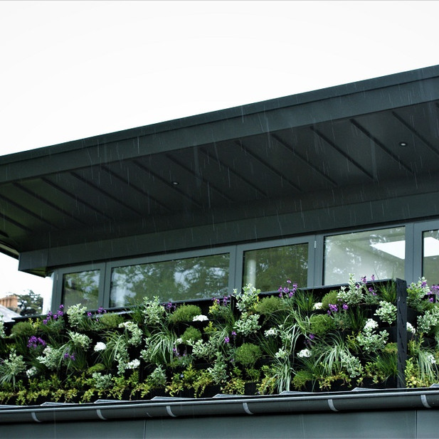 Green living wall balcony.
