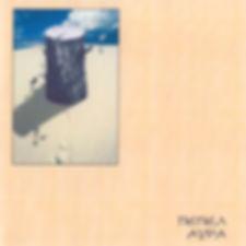 Обложка Аура 2013 (300).jpg