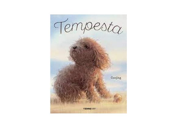 Tempesta. Silent Book