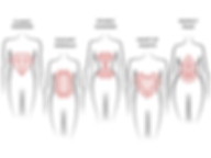 BODY SHAPES.png