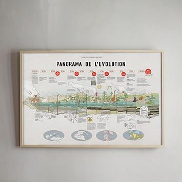 Poster panorama de l'évolution