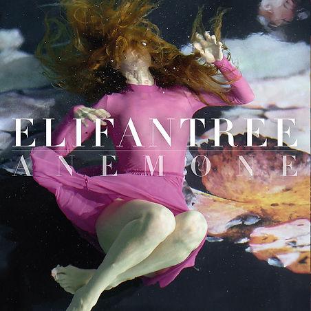 Anemone album by Elifantree