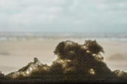 2015-11 Een zee van zand