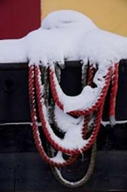 2010-12 Sneeuw op Bredius en Rijn