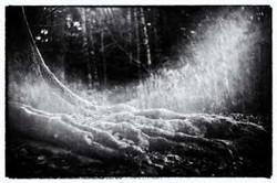 2013-12 Winter-Tenen, Film Noir