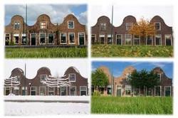 2011-08 Vier seizoenen in Rietveld