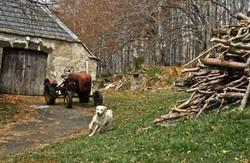1992-04 Auvergne