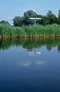 1993-08 Nieuwkoop
