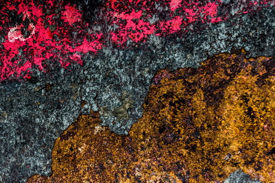 2016-12 Sloep-roest