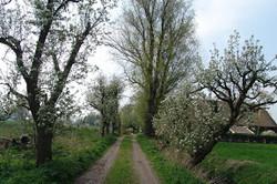 2005-04 Lente