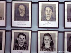 2003-02 Auschwitz