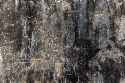 2018-10 Levende muren Pampus