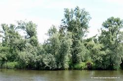 2005-06 Biesbosch