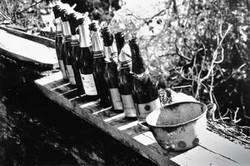 1992-01 Ardèche Nieuwjaarsdag