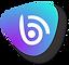 ICONE_logo_brunodigital_2020_cor.png
