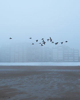 beach-buildings-city-14675.jpg