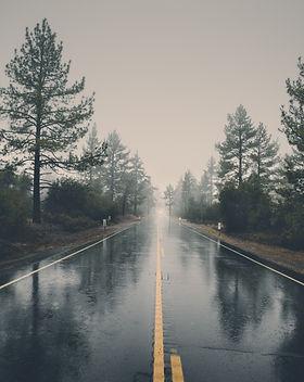 forest-haze-hd-wallpaper-39811.jpg