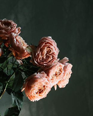beautiful-flowers-blooming-blossom-23774