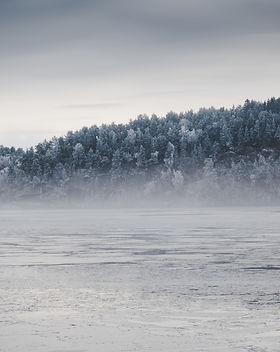 cold-dawn-dusk-325139.jpg