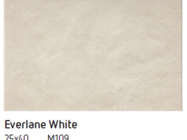 REVESTIMENTO CERAMICO EVERLANE WHITE CX 1 MT2