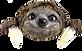 peeping sloth.png