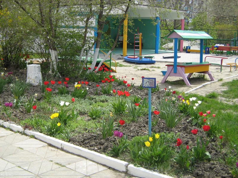 МА ДОУ ЦРР - детский сад № 70 дизайн территории 15