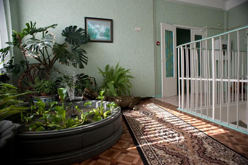 МАДОУ ЦРР-детский сад №70 бассейн в холле
