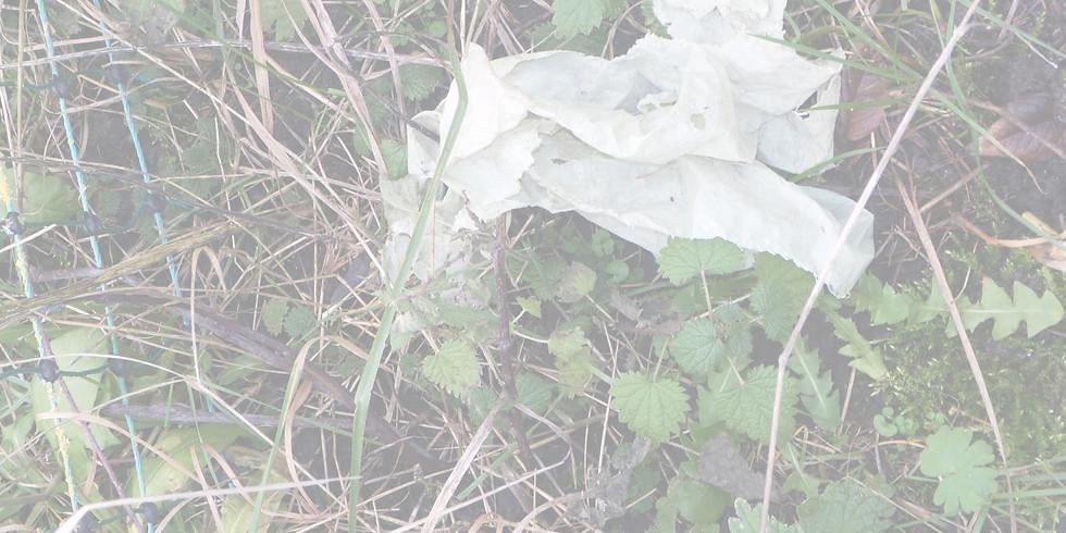 Wissensforum 3 - Die Landwirtschaft als Ursache für die Kontamination von Böden und Gewässern mit Kunststoffen