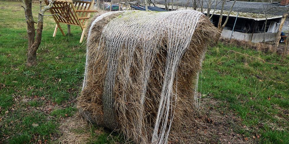 Wissensforum 1 - Einsatz von biobasierten Hilfsstoffen und Materialien in Pflanzenbau, Gartenbau und Forst