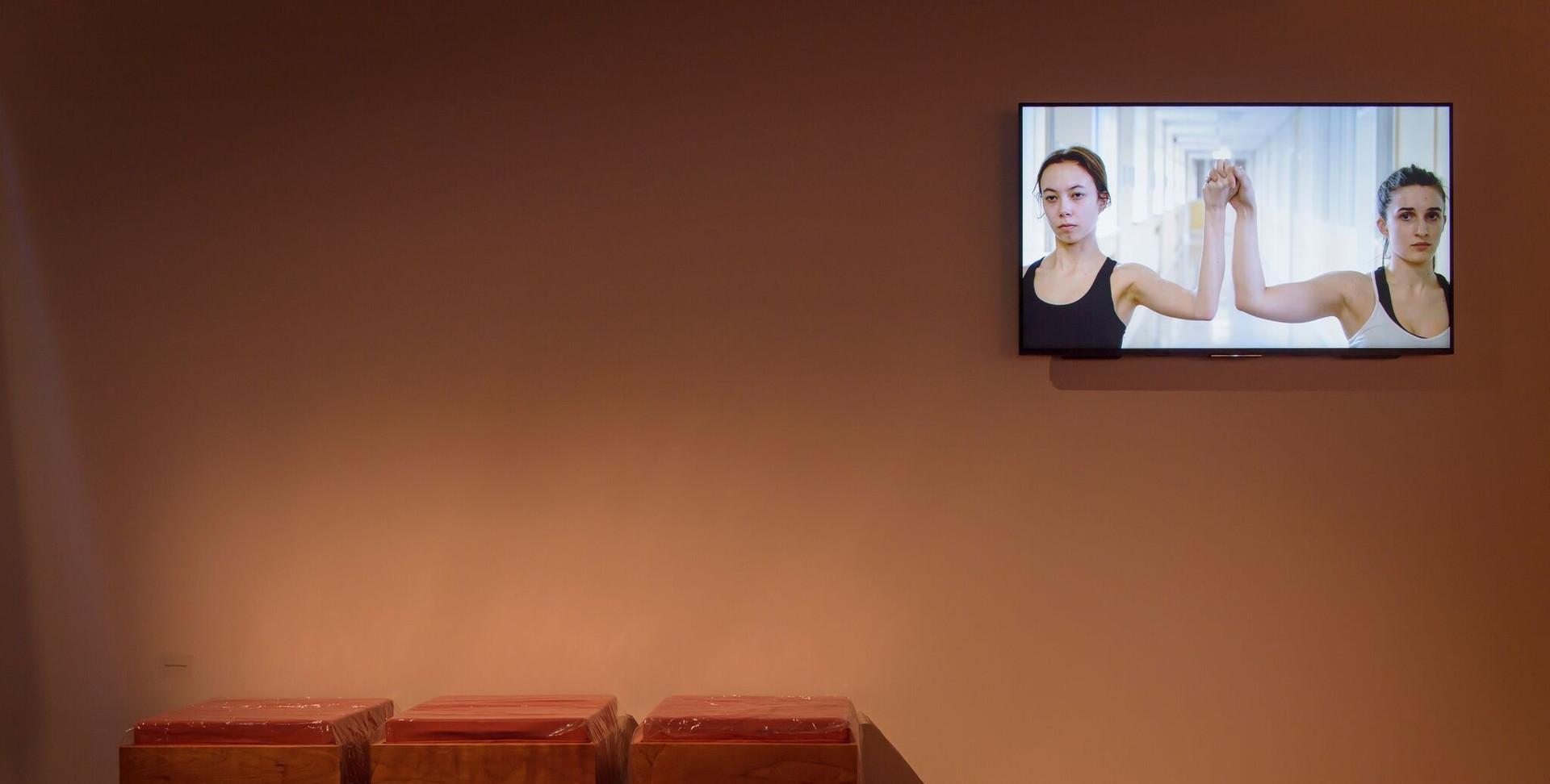 Fig 2 Susan Buttner, Installation fragme