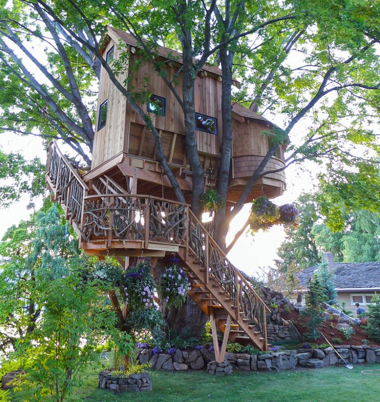 Dream Tree House Abodes: Live In A Cool Tree Home