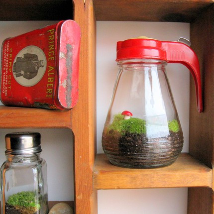 Eco-Friendly Decorating Ideas To Refresh the Decor