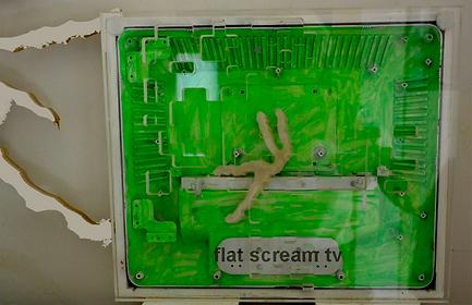 flat scream tv.png