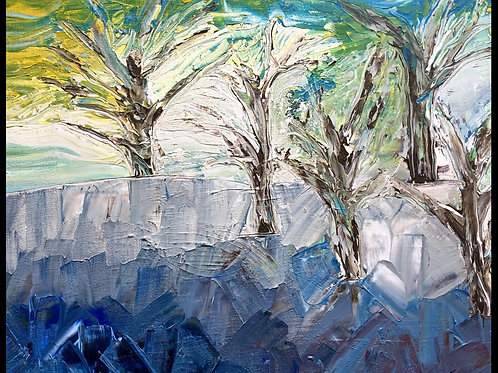 "Trees on the rocks  20""x24"""