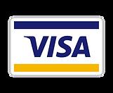 1490135017-visa_82256.png