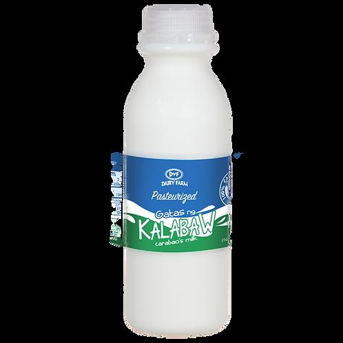 Carabao's Milk