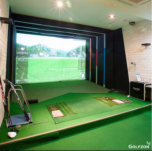Golfzon simulator side pic