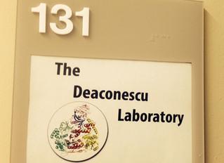 The Deaconescu Lab is Born!